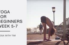 beginner's yoga routine