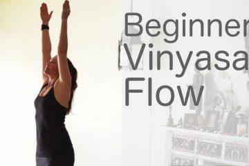 beginners vinyasa flow