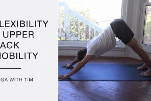 Yoga For Flexibility And Upper Back Mobility with Tim Senesi [28 Min]