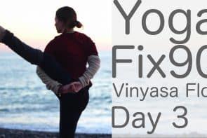 90 Day Yoga Challenge Day 3 Vinyasa Flow to Bird Of Paradise: Yoga [35 Min]
