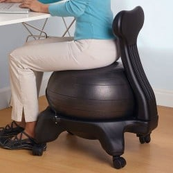 Gaiam Balance Ball Chairs reviews